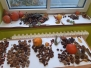Podzimní vyrábění